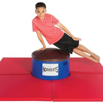POMMEL HORSE TRAINING AIDS